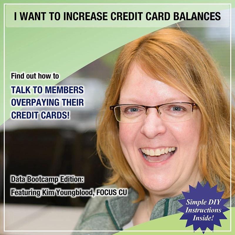 I Want to Increase Credit Card Balances