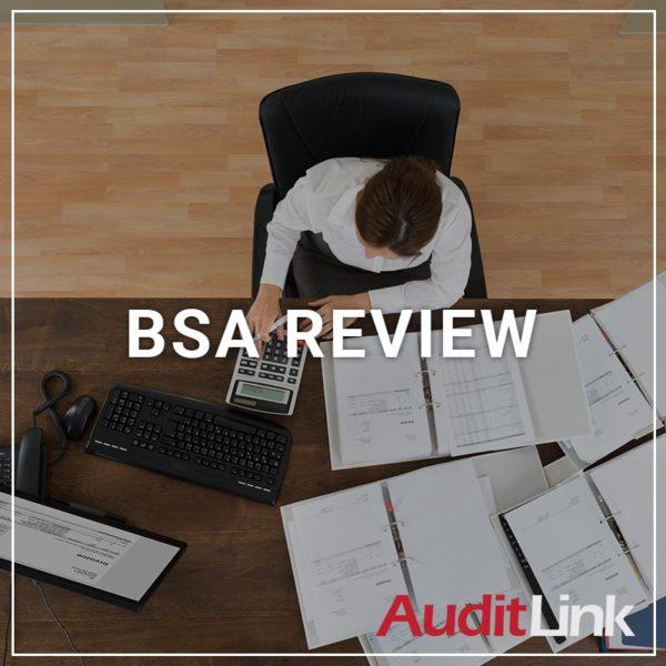 BSA Review