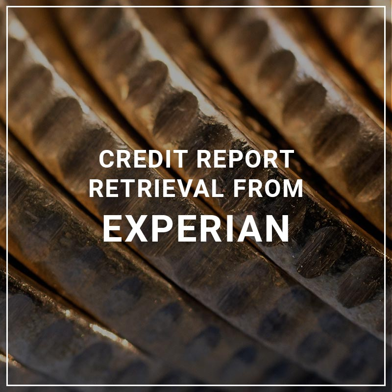 Credit Report Retrieval From Experian