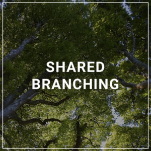 Shared Branching