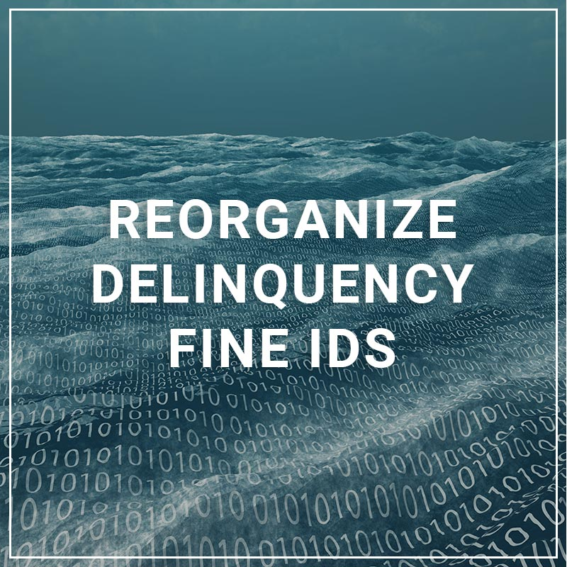 Reassign Delinquency Fine IDs
