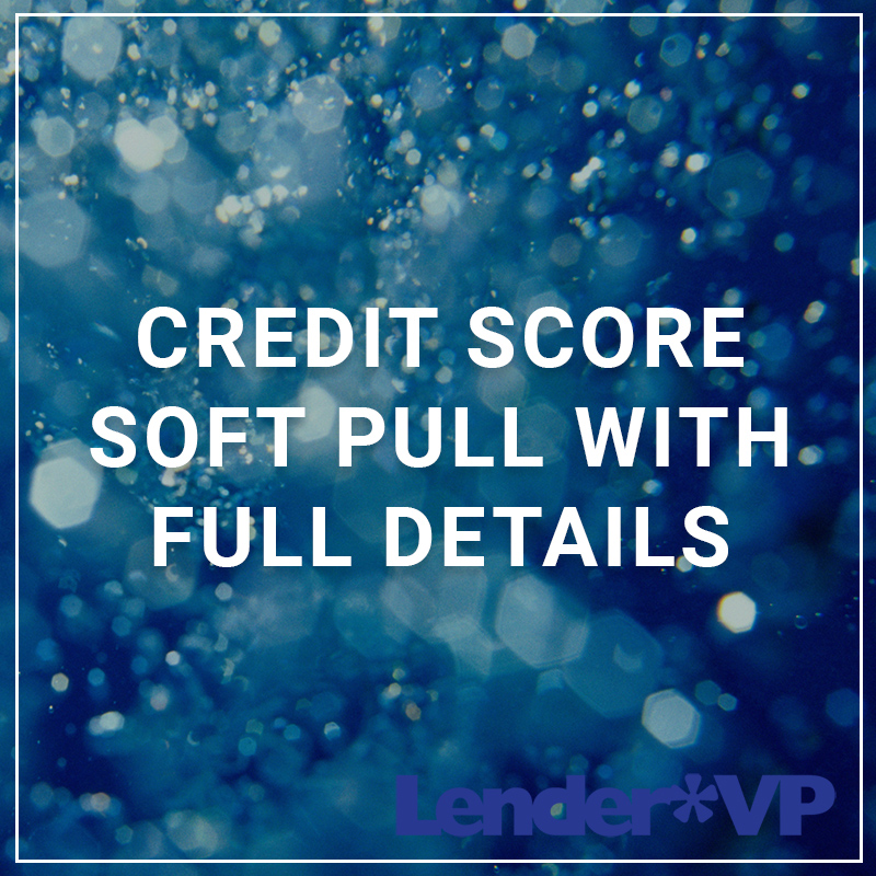 Credit Score Soft Pull with Full Details - a service by Lender*VP