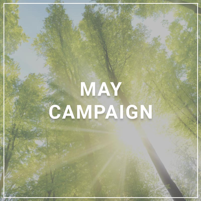 May 2018 Campaign