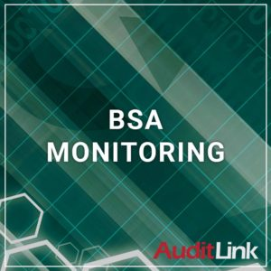 BSA Monitoring - a service by AuditLink