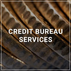 Credit Bureau Services