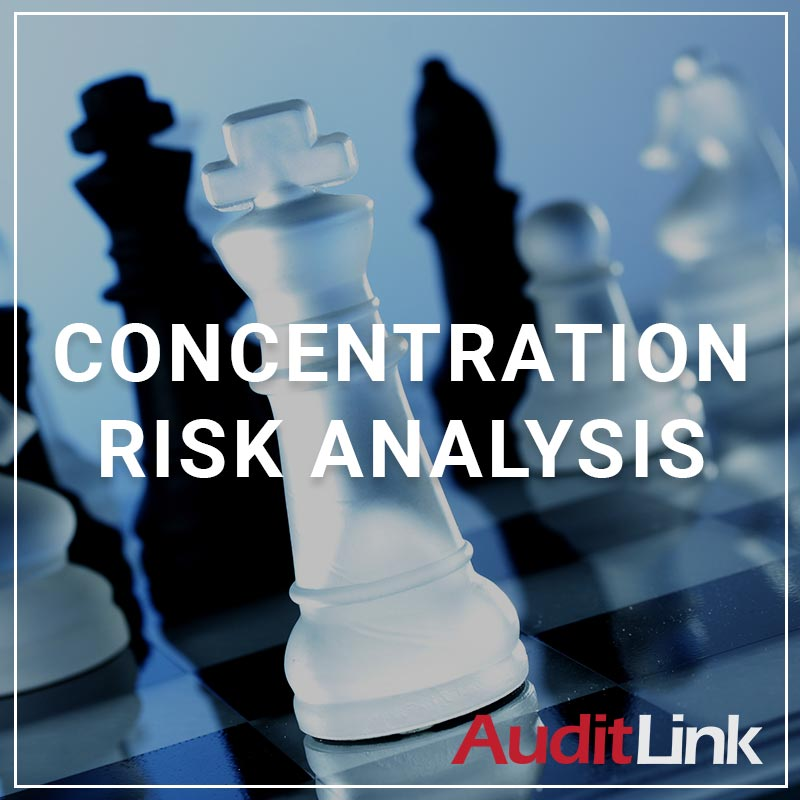 Concentration Risk Analysis - a service by AuditLink