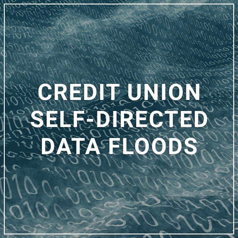 Credit Union Self-Directed Data Floods