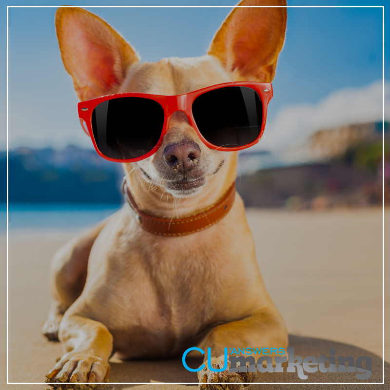 We've got Summer Fun Covered Campaign - a service by Marketing