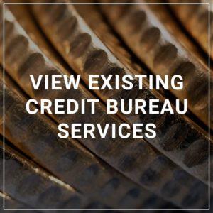 View Existing Credit Bureau Services