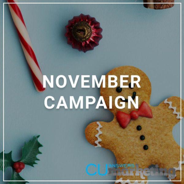 2019 November Campaign