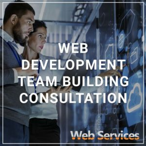 Web Development Team Building Consultation